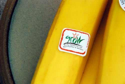 organics-unlimited-fair-trade-and-grow-label-bananas