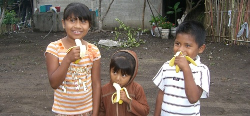 9 Healthy Benefits of Bananas Children Should Know