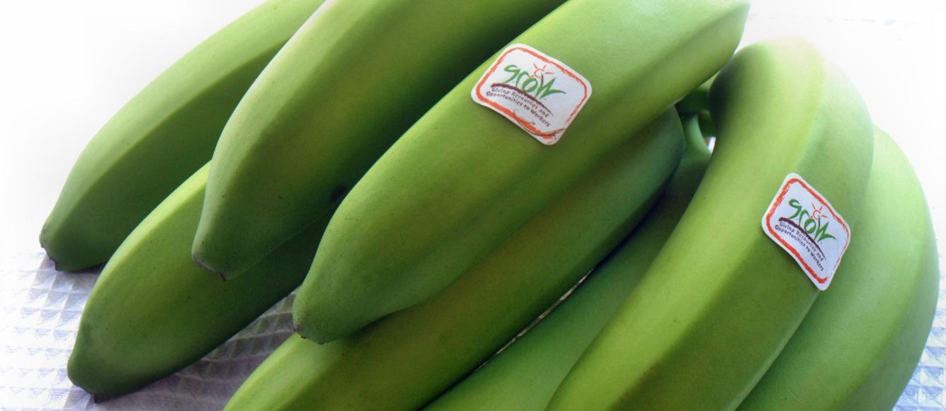 Organic Bananas are Natural Delicious