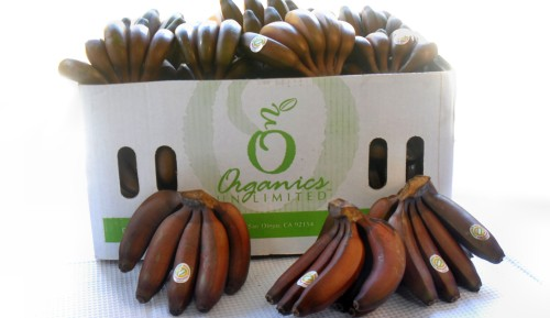 Red Bananas Organics Unlimited