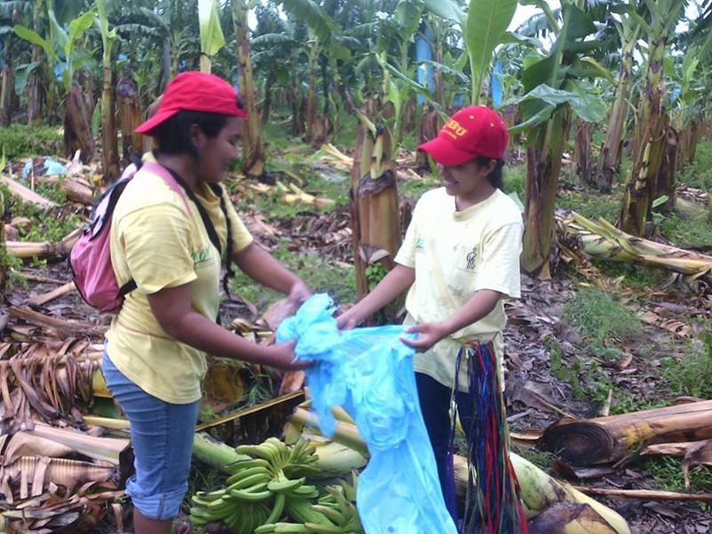 GROW Volunteers 2 Organics Unlimited