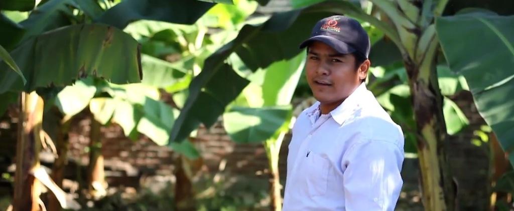 Organics Unlimited Beto Ramirez GROW Bananas