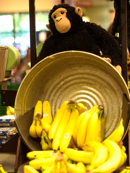 OU bananas and monkey