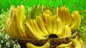 Absolute-Hit-Morning-Banana-Diet